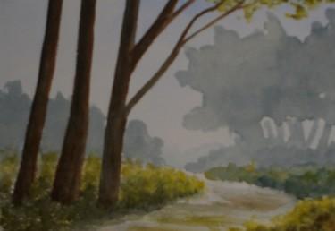 sentier dans la brume