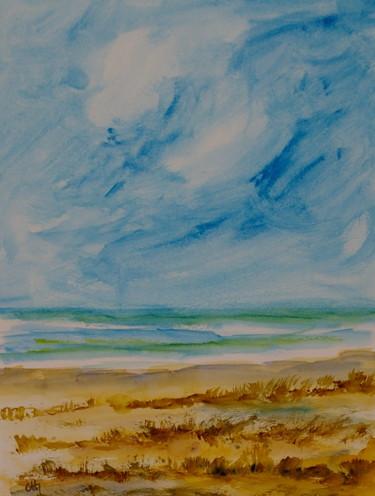 la plage sauvage
